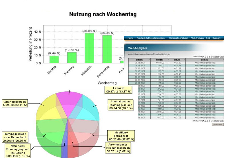 Analyzer Auswertung
